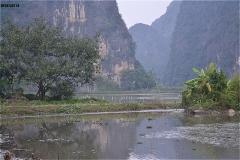 Thai Vi Templeの向かいの風景