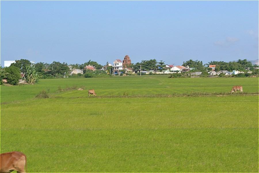 ビンラム塔(Tháp Bình Lâm)が見えてきた