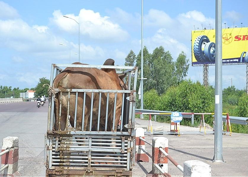 国道QL1Aを、銀塔から金塔に向かう