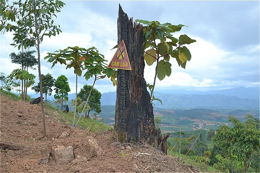 インドシナ交差点 (Landmarks the border Vietnam-Laos-Cambodia)