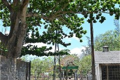 78850-camp-Trai Phu An