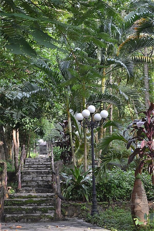 Binh San山=Mac Cuu 一族の墓所