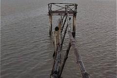 カマウ岬;干潟(bãi bồi ĐẤT MŨI)の観察所