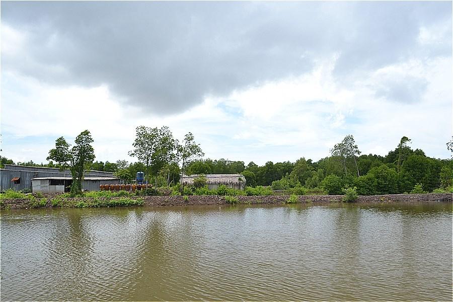 ホームステイ(Điểm Homestay Du lịch sinh thái Cộng Đồng Đất Mũi Tư Ngãi)の眺め