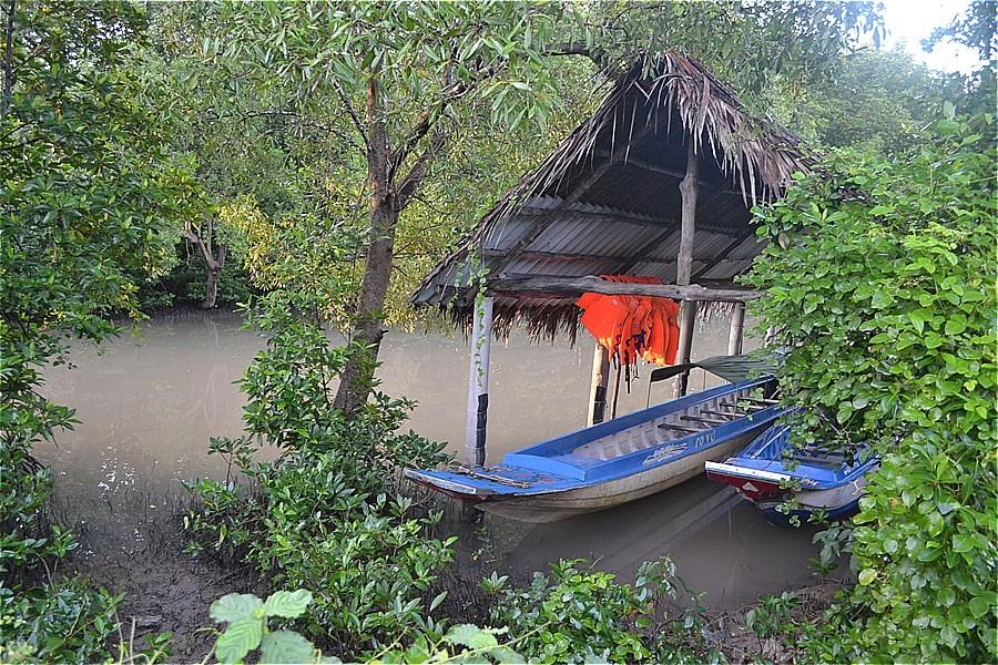 ホームステイ(Điểm Homestay Du lịch sinh thái Cộng Đồng Đất Mũi Tư Ngãi)の様子