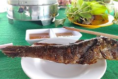 ホームステイ(Điểm Homestay Du lịch sinh thái Cộng Đồng Đất Mũi Tư Ngãi)の料理